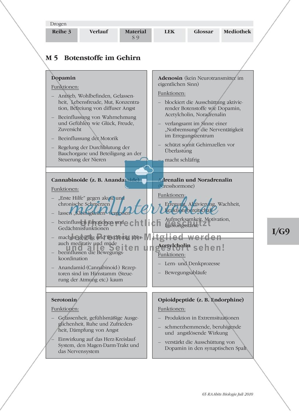 Drogen: Wirkungsweise an der Synapse + Botenstoffe im Gehirn ...