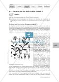 Biologie, Informationsverarbeitung in Lebewesen, Drogen, Kokain, Sucht