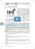 Das Pferd ist als ausdauernder Läufer an die Lebensweise in der Steppe angepasst Preview 1