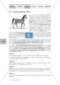 Biologie, Bau und Funktion von Biosystemen, Interaktion von Organismus und Umwelt, Tier, Lebensraum, Pferd