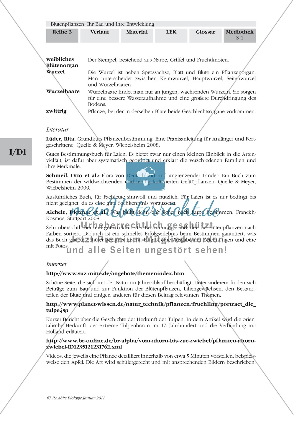 glossar wortbeschreibung zu bl tenpflanzen best ubung. Black Bedroom Furniture Sets. Home Design Ideas