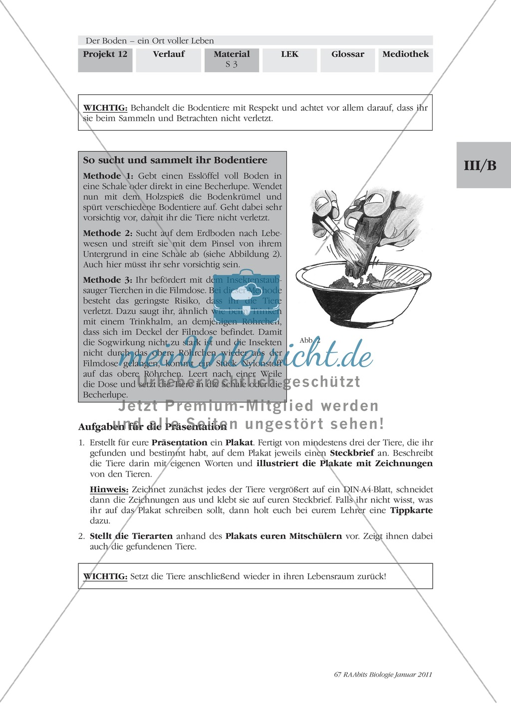 Bodentiere: Untersuchung und Bestimmung, Steckbrief, Exkursion, Präsentation Preview 1