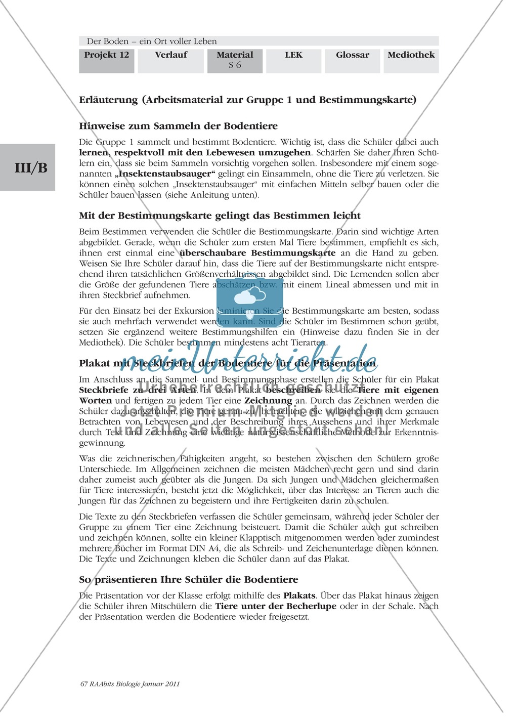 Bodentiere: Untersuchung und Bestimmung, Steckbrief, Exkursion, Präsentation Preview 4