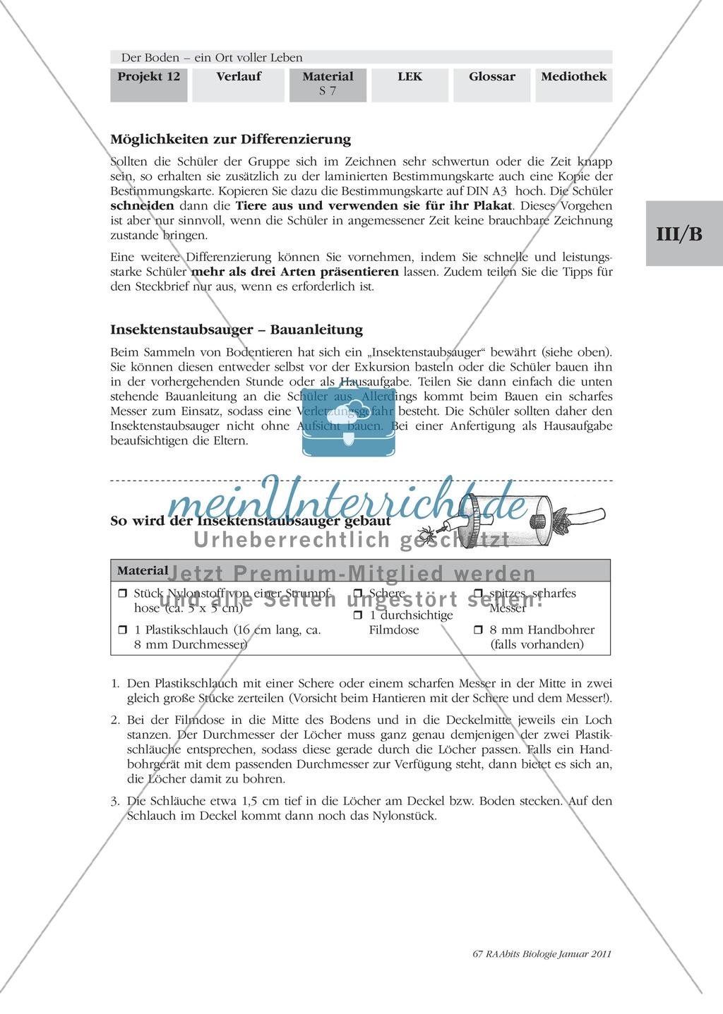 Bodentiere: Untersuchung und Bestimmung, Steckbrief, Exkursion, Präsentation Preview 5