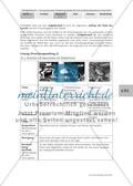 Forschungsauftrag 1 – Merkmale und Eigenschaften von Pfeilgiftfröschen Preview 7