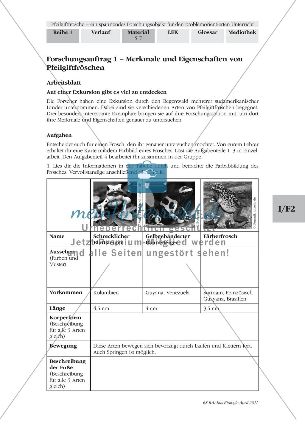 Merkmale und Eigenschaften von Fröschen am Beispiel von Pfeilgiftfröschen: Forschungsauftrag Preview 0