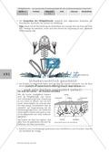 Merkmale und Eigenschaften von Fröschen am Beispiel von Pfeilgiftfröschen: Forschungsauftrag Thumbnail 1
