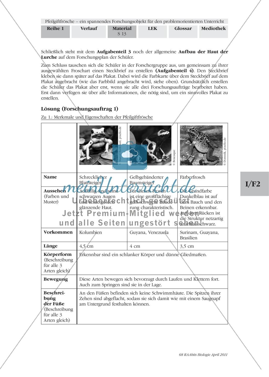 Merkmale und Eigenschaften von Fröschen am Beispiel von Pfeilgiftfröschen: Forschungsauftrag Preview 5