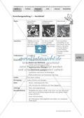 Merkmale und Eigenschaften von Fröschen am Beispiel von Pfeilgiftfröschen: Forschungsauftrag Thumbnail 7