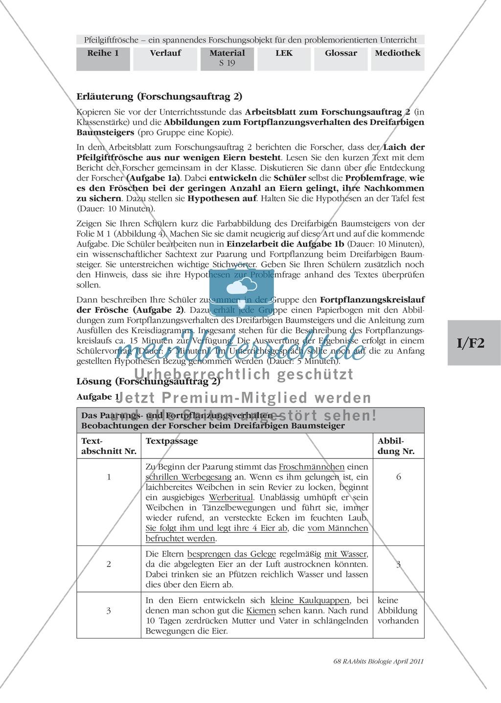 Fortpflanzung von Lurchen am Beispiel von Fröschen: Forschungsauftrag Preview 3