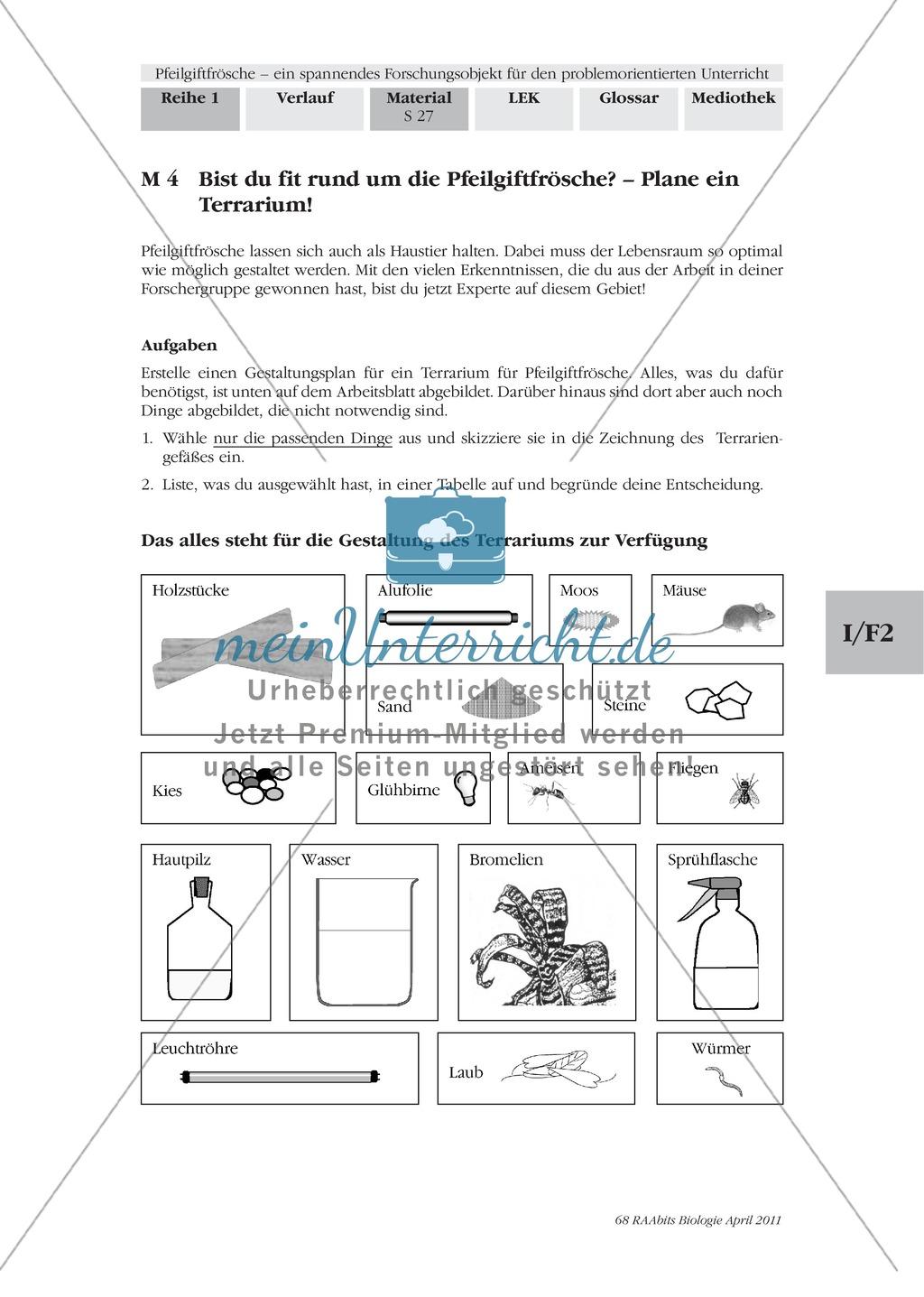 Lernerfolgskontrolle zum Thema Frösche am Beispiel der Pfeilgiftfrösche Preview 0