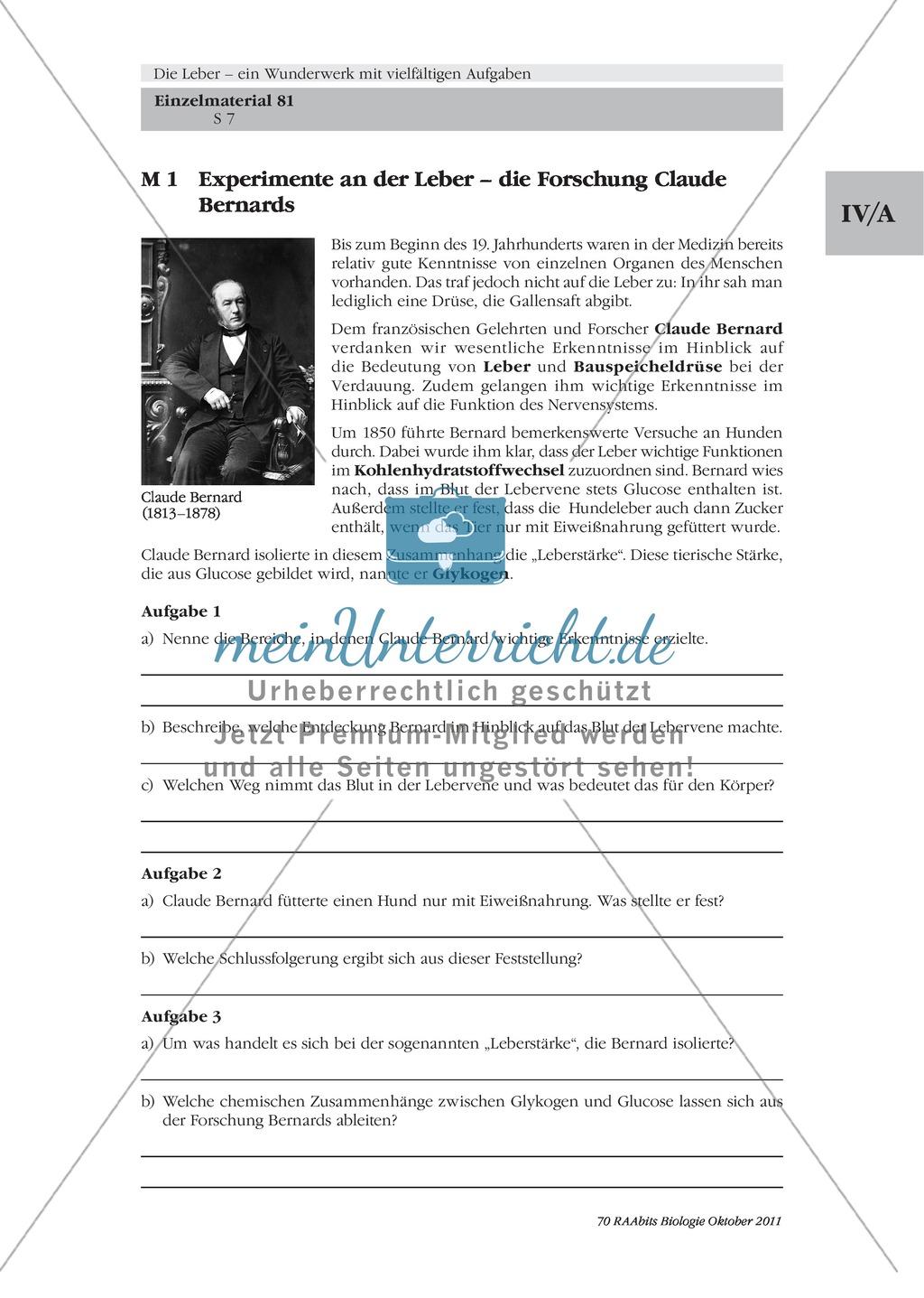 Leber: Einführung, Text, Experimente an der Leber, Claude Bernard Preview 0
