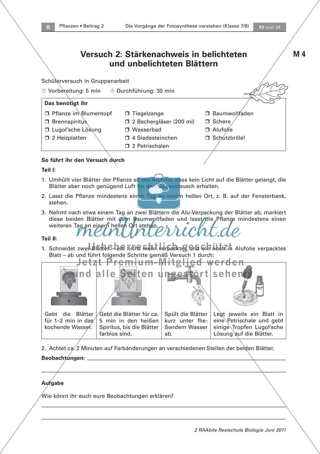 die vorg nge der fotosynthese st rkenachweis in. Black Bedroom Furniture Sets. Home Design Ideas
