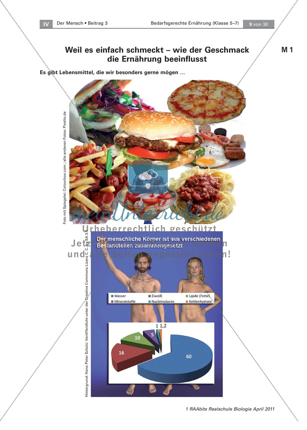 Beeinflussung der Ernährung durch den Geschmack: Geschmackstest Hamburger, Text Preview 1