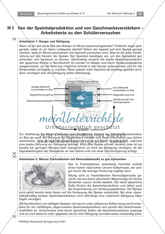 Beeinflussung der Ernährung durch den Geschmack: Geschmackstest Hamburger, Text Preview 4