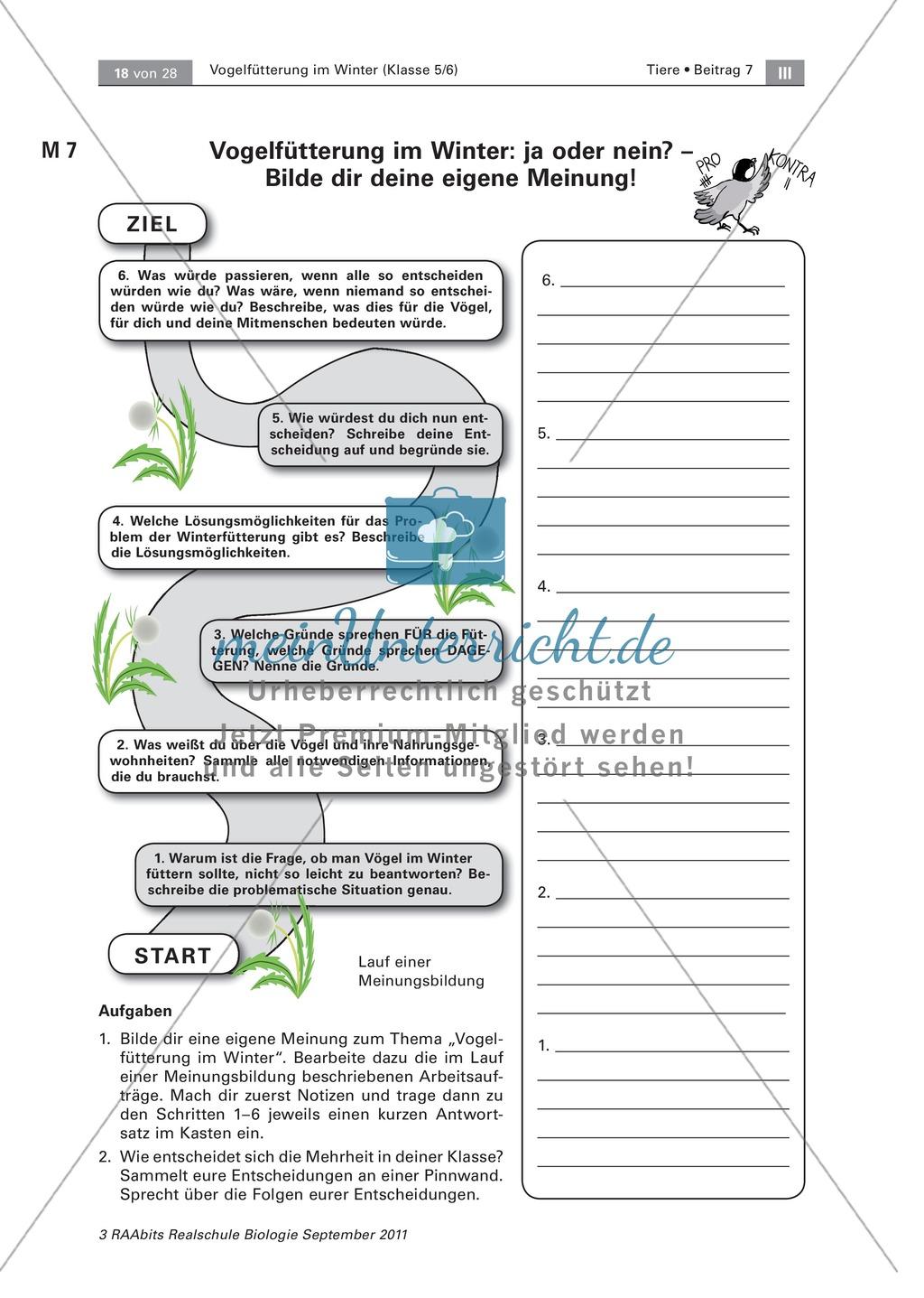 Meinungsbildung zur Vogelfütterung im Winter: Placemat, Fragen Preview 3