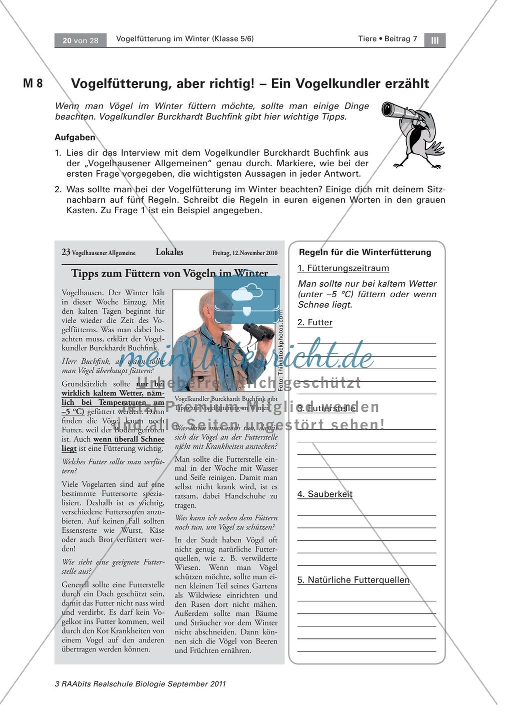 Meinungsbildung zur Vogelfütterung im Winter: Placemat, Fragen Preview 5