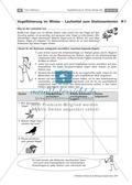 Überwinterung und Fütterung von Vögeln: Stationsarbeit, Herstellung einer Broschüre Preview 1