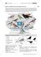 Überwinterung und Fütterung von Vögeln: Stationsarbeit, Herstellung einer Broschüre Thumbnail 2