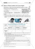 Überwinterung und Fütterung von Vögeln: Stationsarbeit, Herstellung einer Broschüre Preview 4