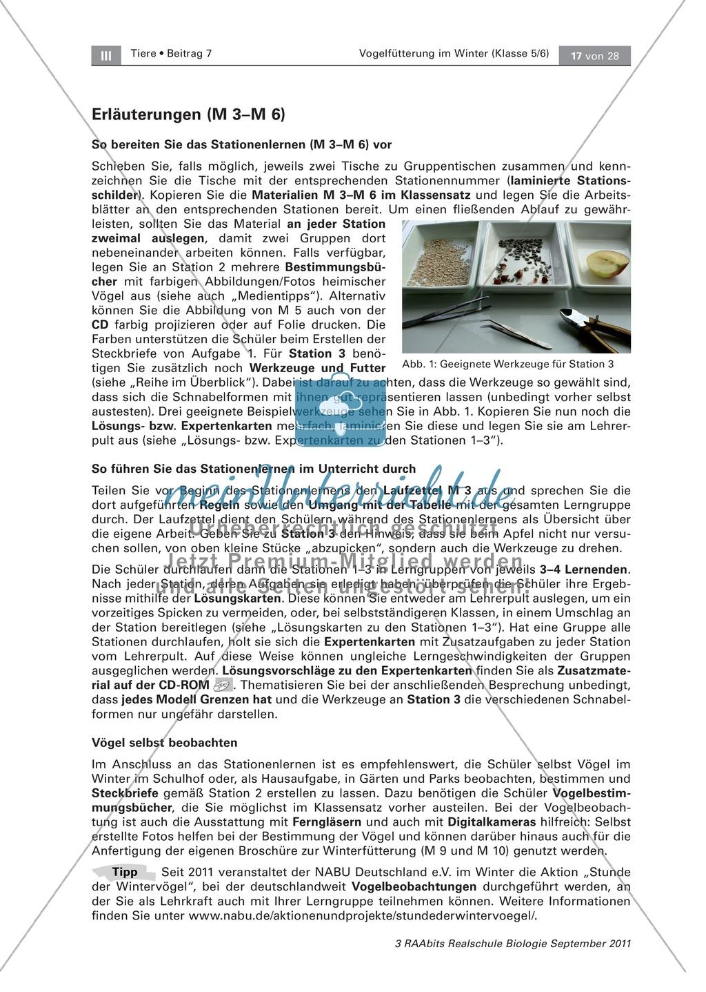 Überwinterung und Fütterung von Vögeln: Stationsarbeit, Herstellung einer Broschüre Preview 6