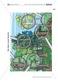 Spechte und ihre ökologische Nischen im Wald: Modelle, Beschriftung Thumbnail 3