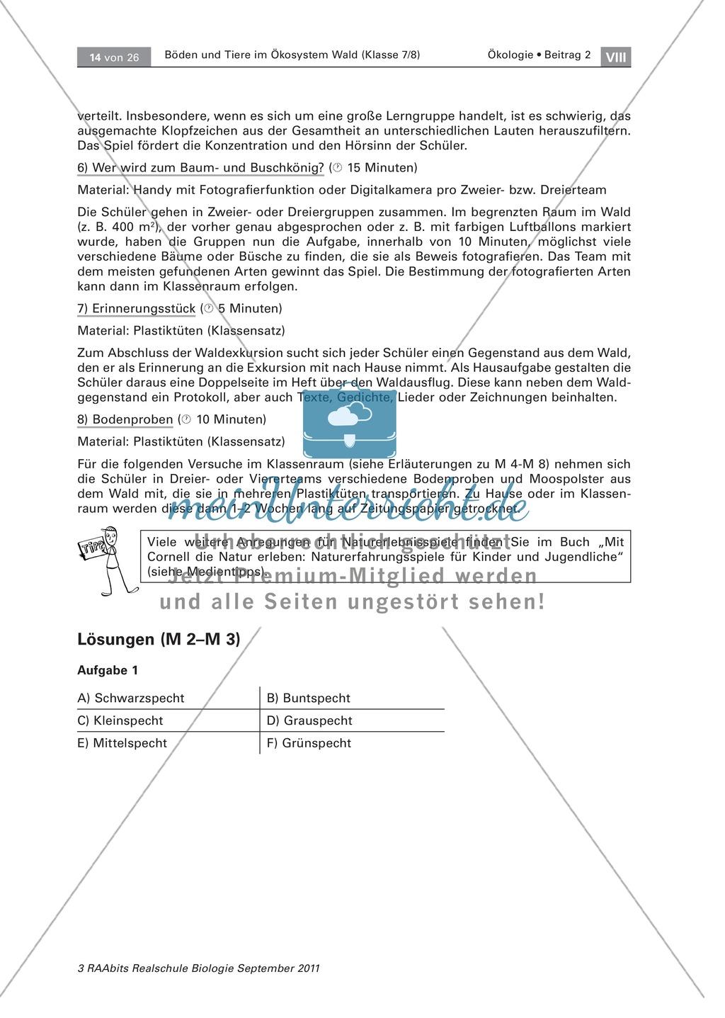 Spechte und ihre ökologische Nischen im Wald: Modelle, Beschriftung Preview 6