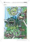 Spechte und ihre ökologische Nischen im Wald: Modelle, Beschriftung Preview 8