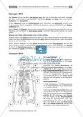Zwei Kreisläufe des menschlichen Herzens: Lückentext, Beschriften Thumbnail 3