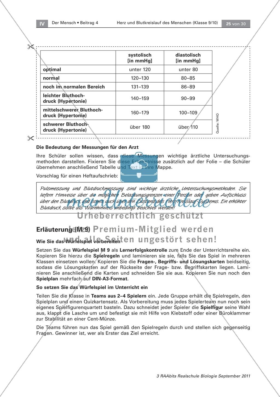 Puls- und Blutdruckmessung: Theorie und Durchführung - meinUnterricht