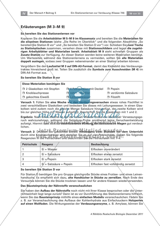 Leber und Bauchspeicheldrüse: Text, Versuch Preview 3