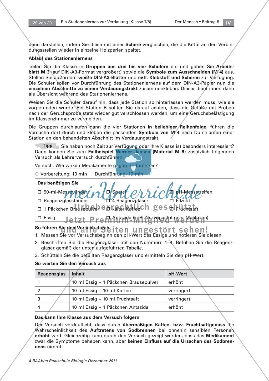Leber und Bauchspeicheldrüse: Text, Versuch Preview 4