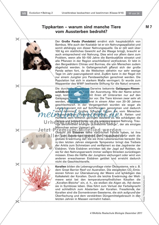 Evoultion  -  Fossilien: Die Placemat-Methode - Lebende Fossilien kennenlernen am Beispiel der Uhrzeitkrebse Preview 4