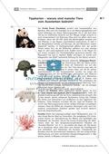 Evoultion  -  Fossilien: Die Placemat-Methode - Lebende Fossilien kennenlernen am Beispiel der Uhrzeitkrebse Preview 5