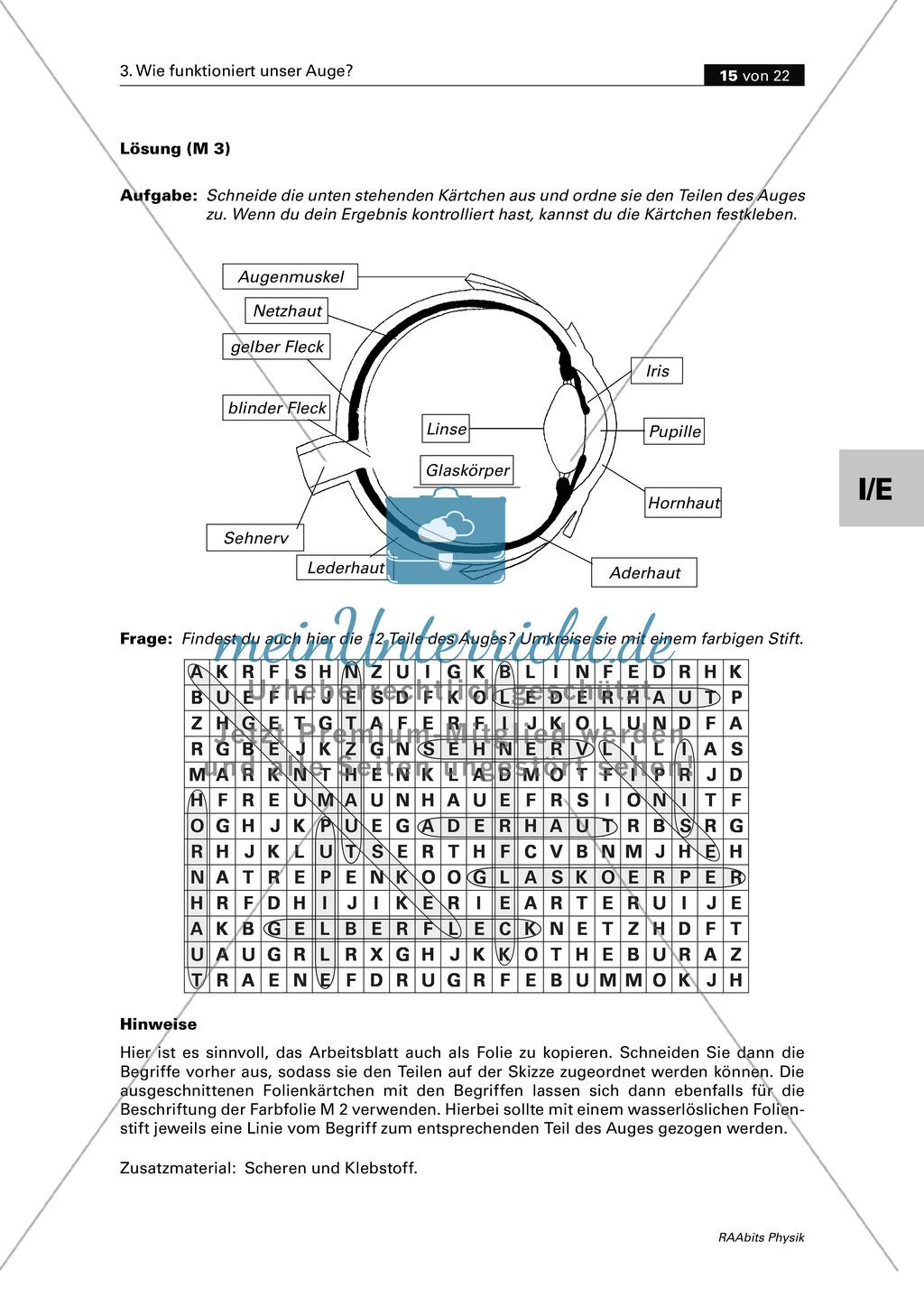 Optik: Wie das menschliche Auge funktioniert. Mit Aufgaben und Lösungen. Preview 6