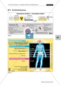 Messung von Poloniumspuren - der Fall Litwinenko + Simulation eines radioaktiven Zerfalls Preview 9