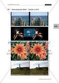 Einen 3-D-Projektor mit linearem Polarisationsfilter bauen/ Stereoskopische Bilder Preview 2