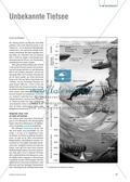 Extreme Lebensräume: Das Leben in der Tiefsee. Mit didaktischen Erläuterungen. Preview 1