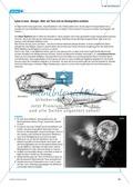 Extreme Lebensräume: Das Leben in der Tiefsee. Mit didaktischen Erläuterungen. Preview 7