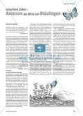 Die Ameise als Wirt am Beispiel der Bläulinge. Mit didaktischen Erläuterungen. Preview 1