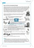 Die Ameise als Wirt am Beispiel der Bläulinge. Mit didaktischen Erläuterungen. Preview 5