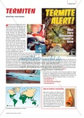 Die Lebensräume von Termiten und ihr Hauptnahrungsmittel Holz. Mit didaktischen Erläuterungen. Preview 3