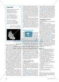 Arzneimittel: Eigenschaften und Heilwirkungen des Ginkgo biloba. Mit didaktischen Erläuterungen. Preview 2