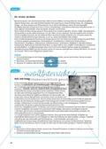 Arzneimittel: Eigenschaften und Heilwirkungen des Ginkgo biloba. Mit didaktischen Erläuterungen. Preview 4