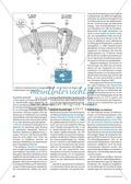 Arzneimittel: Das Wirkungsspektrum des Knoblauchs als Medizin. Mit didaktischen Erläuterungen. Preview 2