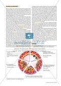 Arzneimittel: Das Wirkungsspektrum des Knoblauchs als Medizin. Mit didaktischen Erläuterungen. Preview 4