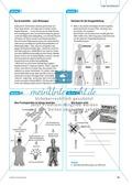 Arzneimittel: Die Wirkungsweisen und Nebenwirkungen von Aspirin. Mit didaktischen Erläuterungen. Preview 2