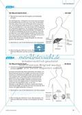 Arzneimittel: Die Wirkungsweisen und Nebenwirkungen von Aspirin. Mit didaktischen Erläuterungen. Preview 4