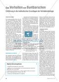 Methodische Grundlagen der Verhaltensbiologie am Beispiel von Buntbarschen Preview 1