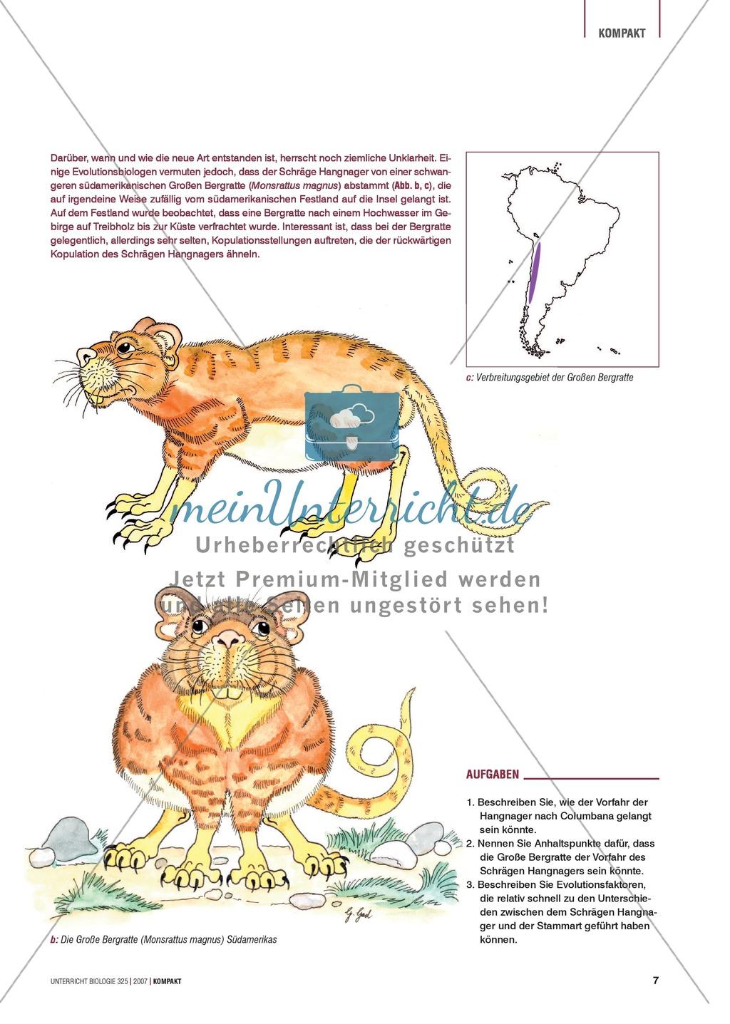 Evolutionsfaktoren: Fortpflanzungsverhalten und Abstammung des ...